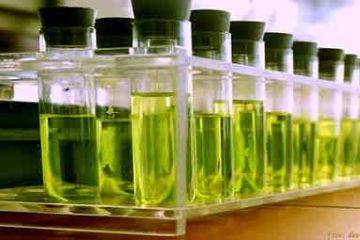 Nghiên cứu in-vitro: Tác dụng chống viêm và chống dị hóa của Tendoactive® trên tế bào gân người