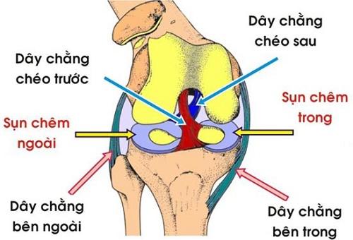 trieu-chung-gian-day-chang-dau-goi1